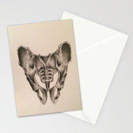 Original Pelvic Bone Pencil Drawing Stationery Cards