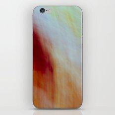 99 iPhone & iPod Skin
