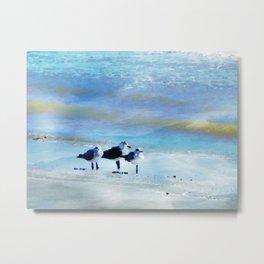 Galveston Seagulls Metal Print