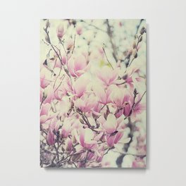 Purple Magnolia Blossoms Spring Botanical Metal Print
