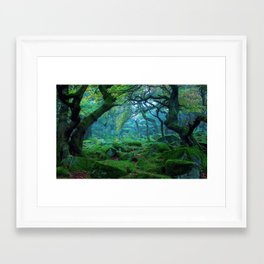 Enchanted forest mood Framed Art Print