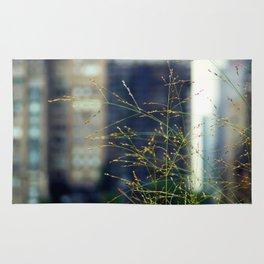 Wisps of Weeds in the City Rug