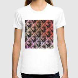 Limestone roses through rosy lenses T-shirt