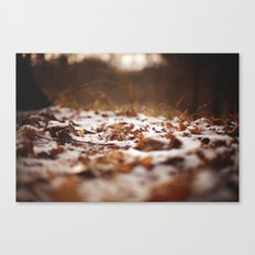 good things in life Canvas Print