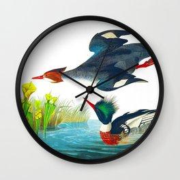 Red-breasted Merganser Bird Wall Clock