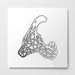 D Y N O Metal Print