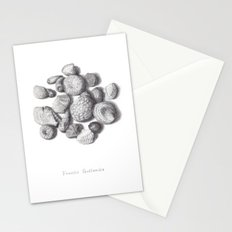 Fossils Stationery Cards