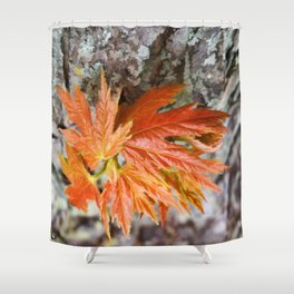 Leaf Sprouts Shower Curtain