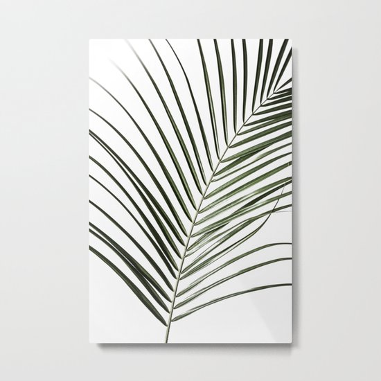 Palm Leaves 8 Metal Print
