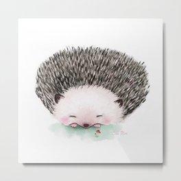 Sleeping hedgehog -.- Metal Print