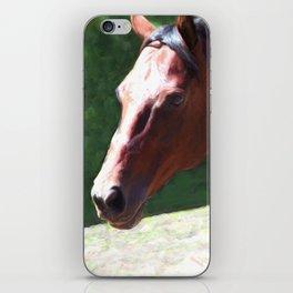 Priceless Mischief iPhone Skin