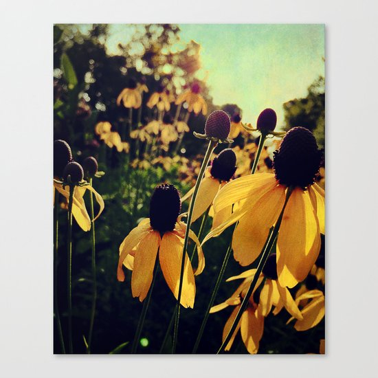 On the Edge of Summer Canvas Print