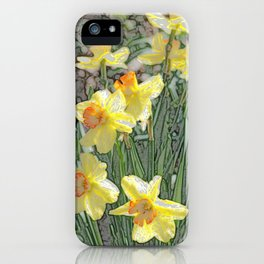 Daffodils! iPhone Case