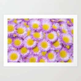 Yellow Centres Art Print