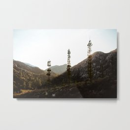 sunset in angeles crest forest Metal Print
