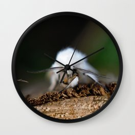 White Moth on a Piece of Wood Wall Clock