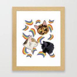 Purrfect Rainbow Framed Art Print