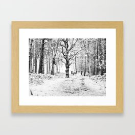 The tree in the clearing Framed Art Print