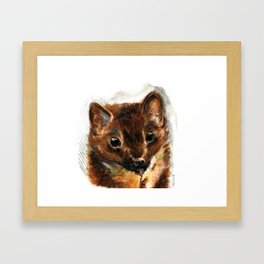 European marten Framed Art Print