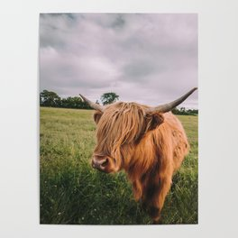Epic Highland Cow Poster