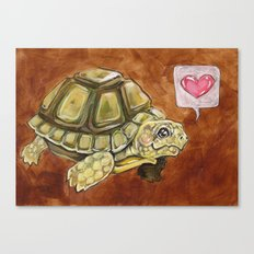 Tortoise love Canvas Print