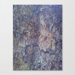 Termites Canvas Print