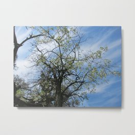 One Day there'll be a Place for Us Metal Print