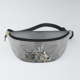 Crystalline Cat Fanny Pack