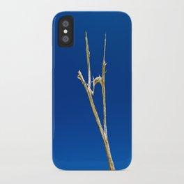 Soaring High in Blue Skies iPhone Case