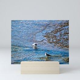 Seagulls Birds Seashore Beach Mini Art Print