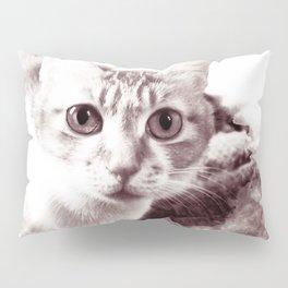 Cat Porn Pillow Sham