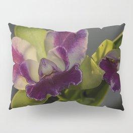 Outrageous Orchid Pillow Sham
