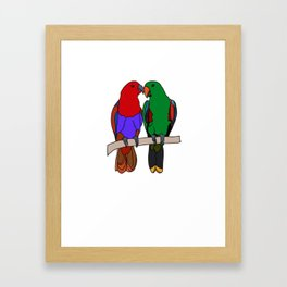 Complementary Eclectus Framed Art Print