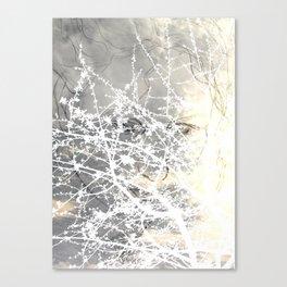 Demetra Canvas Print