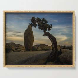 Juniper Tree in Joshua Tree National Park Serving Tray