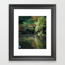 Reflection Pond Framed Art Print