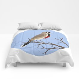 Rosy-patched Bush-shrike Comforters