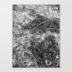 Straw ashes ~hai~ Canvas Print