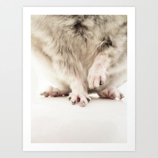 Chinchilla Hands = The Cutest Hands Art Print