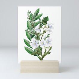 ...Where you bee, white bee Mini Art Print