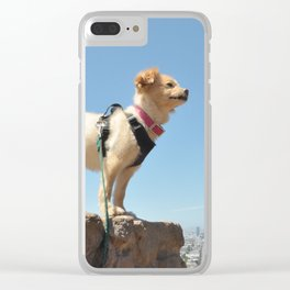 Wonder Dog in San Francisco Clear iPhone Case