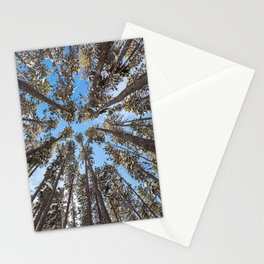 Yellowstone National Park - Lodgepole Forest Stationery Cards