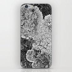 Lichen Home iPhone & iPod Skin