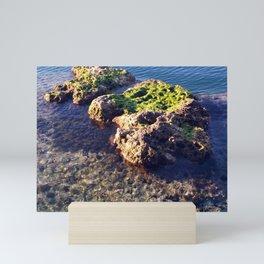 Chrystal Clear Mini Art Print