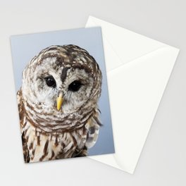 Ceces Pieces Stationery Cards