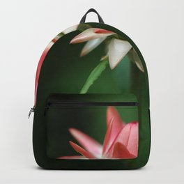 Triumph Backpack