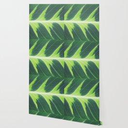 Leaf green Wallpaper