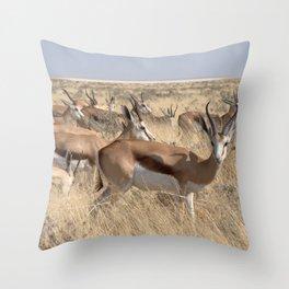 Springbok herd - Greg Katz Throw Pillow
