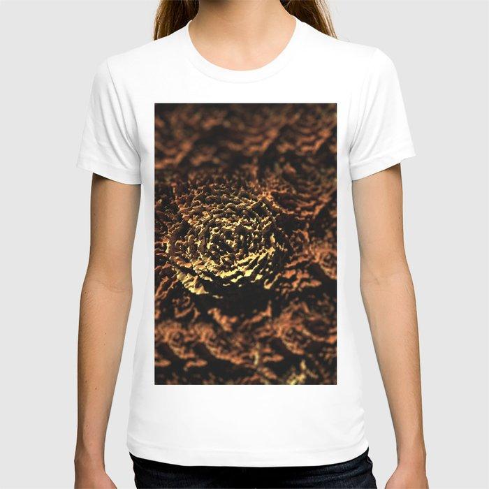 Wooden roses landscape texture field background T-shirt