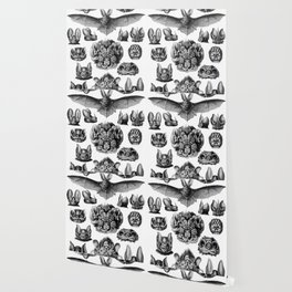 Ernst Haeckel Bats Wallpaper
